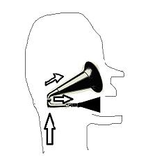 voice3s